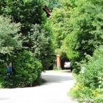 Die Einfahrt zur Arztpraxis Schaffner Nikmo